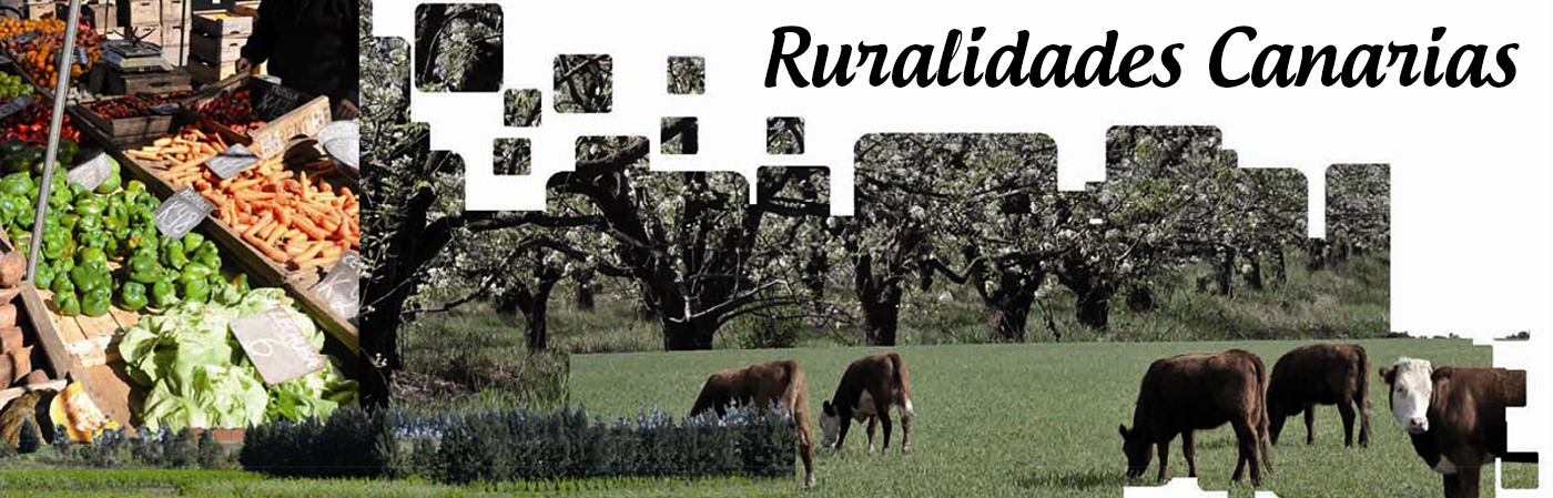 Ruralidades Canarias